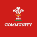 Welsh Rugby Union Hub