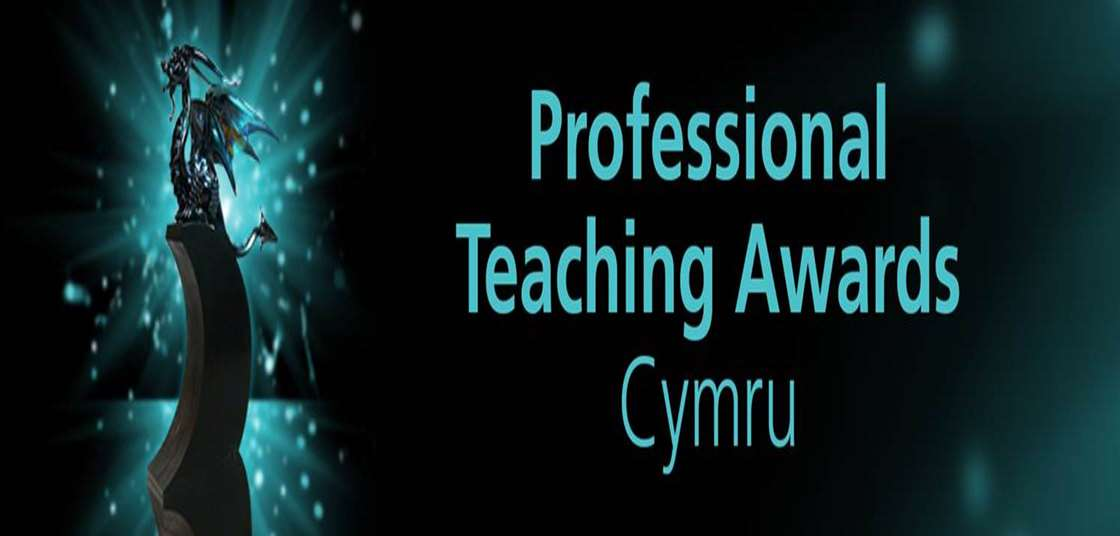 Professional Teaching Awards Finalist